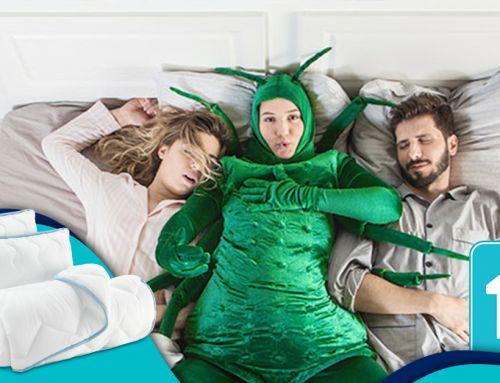 Dormeo – Ndryshoje çdo 10 vjet