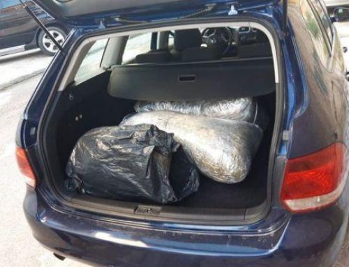 City News Albania – Kapen me 27 kg kanabis në makinë/ Prangosen dy persona